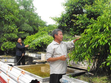 Thú vị trải nghiệm làng vườn Bách Thuận trong 1 ngày!